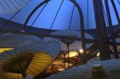Explore-Italy-Milan-Expo-asian-umbrellas