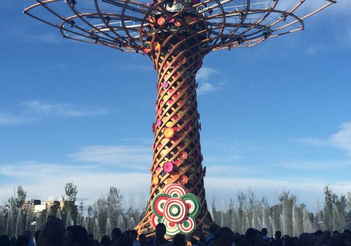 Explore-Italy-Milan-Expo-tree-of-life