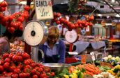 Explore-Italy-Florence-food-markets-5