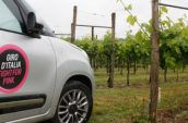 silver vehicle parked near grape vines at daytime