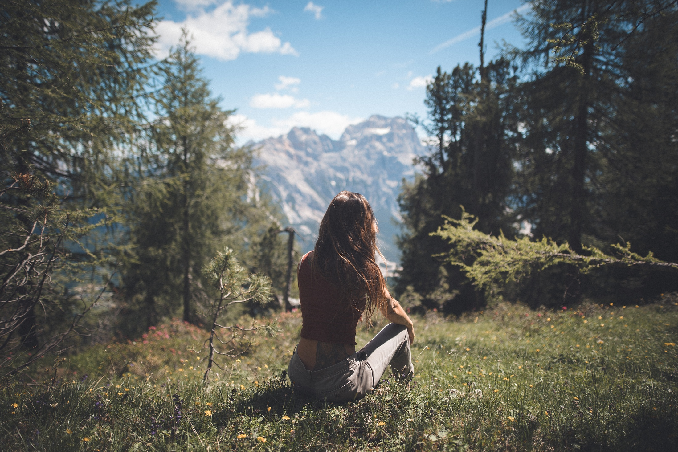woman sitting on green grass while facing forest at daytime